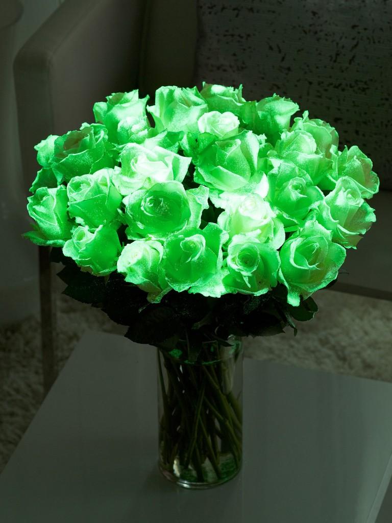 Картинки светящиеся цветы 2