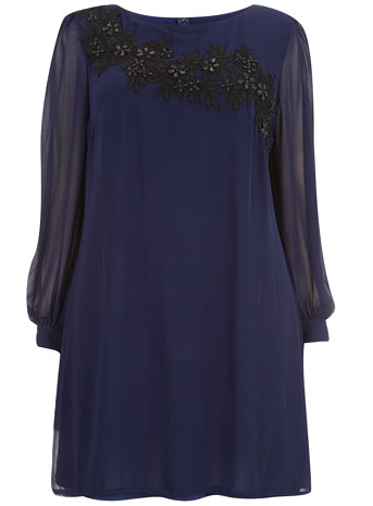 Ice Blossom Blue Embroidered Shift Dress     Price: £55.00 click to visit Evans