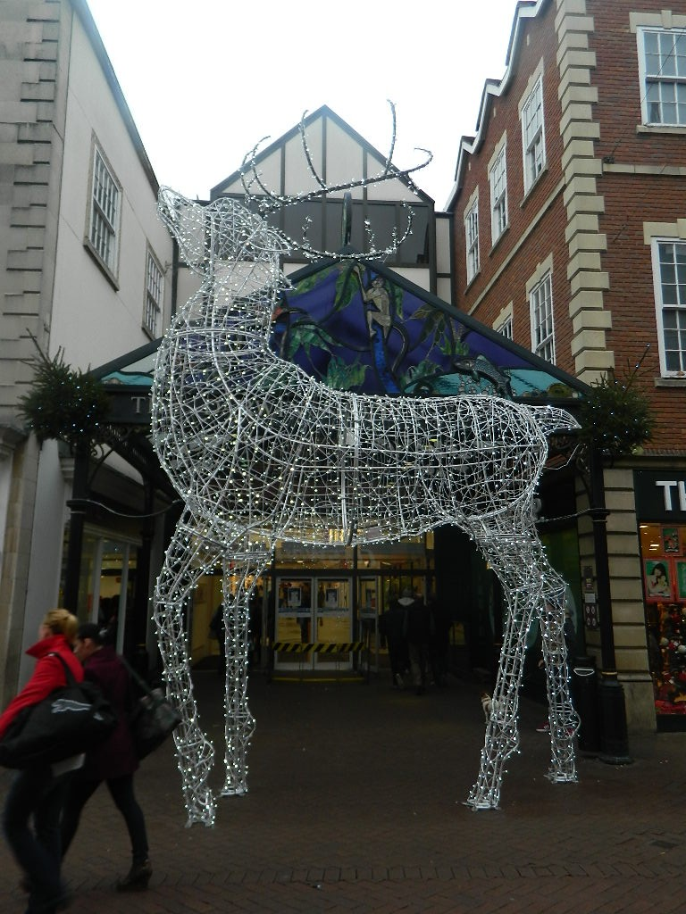 Giant Reindeer in Shrewsbury