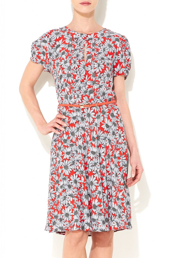 Red Daisy Fit and Flare Dress Was £40.00 Now £38.00 click to visit Wallis