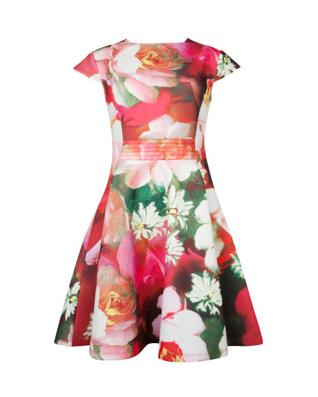 ROZIEY Rose on canvas print dress     £139.00 click to visit Ted Baker