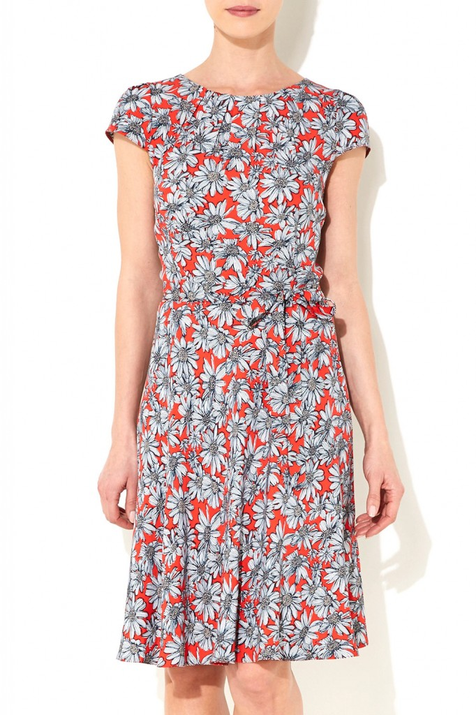 Red Daisy Fit and Flare Dress     Price: £40.00 click to visit Wallis