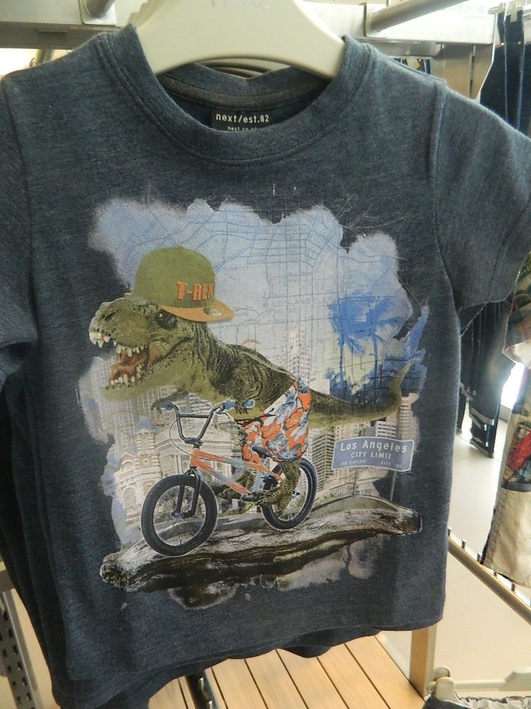 Blue Bike Dino T-Shirt (3-16yrs) £5.50 - £10.50 click to visit Next