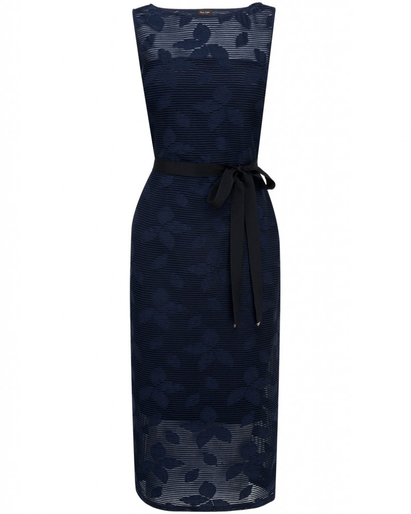 Nicole Dress £110.00 click to visit Phase Eight