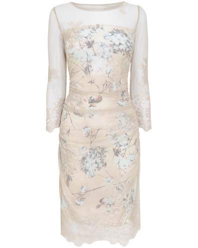 Bridgette Lace Dress £130.00 click to visit Phase Eight