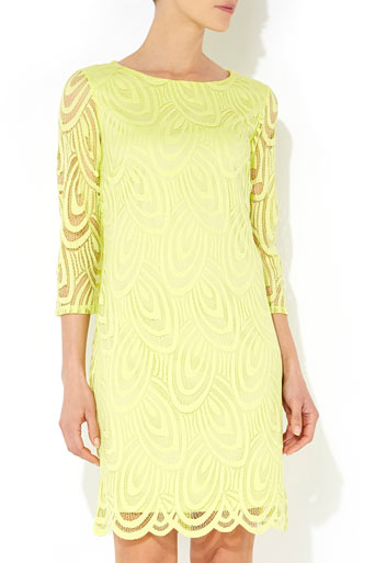 Lime Green Petite Lace Dress     Price: £45.00 click to visit Wallis
