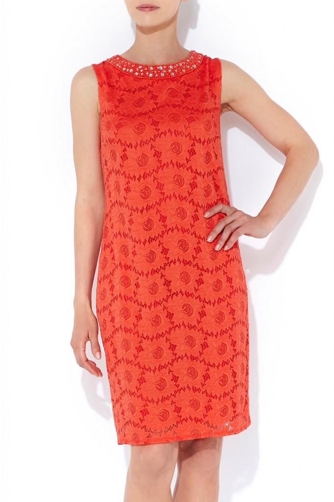 Orange Lace Embellished Dress     Price: £45.00 click to visit Dorothy Perkins
