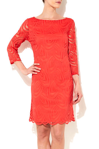 Coral Lace Dress      Price: £45.00 click to visit Wallis