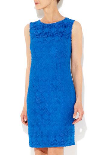 Blue Lace Shift Dress     Price: £42.00 click to visit Wallis