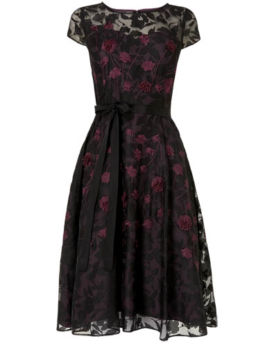 Suri Embroidered Dress £165.00 click to visit Phase Eight
