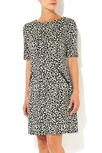 Petite Leopard Dress     Was £40.00     Now £32.00 click to visit Wallis