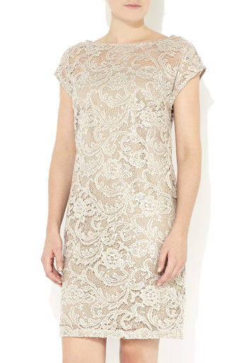 Champagne Sequin Lace Dress     Price: £70.00 click to visit Wallis