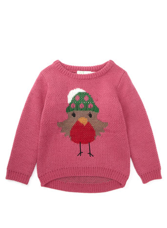Christmas Robin Jumper     Price: from £12.00 click to visit BHS