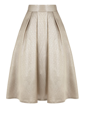 PENNY SKIRT £125.00 click to visit Coast