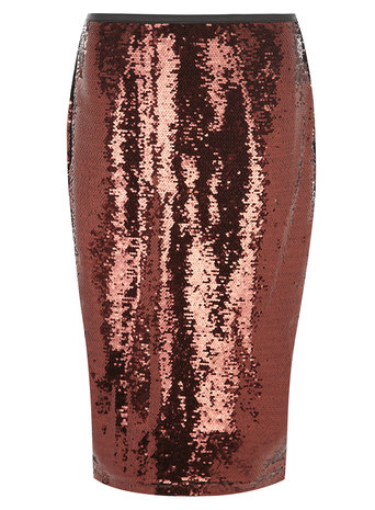 Bronze Sequin Pencil Skirt     Was £45.00     Now £25.00 click to visit Dorothy Perkins