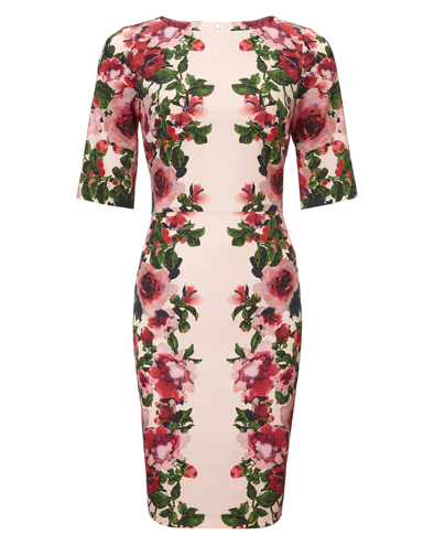 Elodine Dress £140.00 click to visit Phase Eight