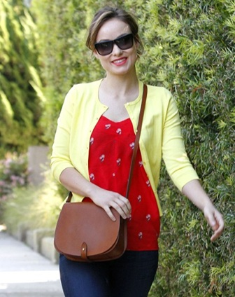 Olivia Wilde saddle bag