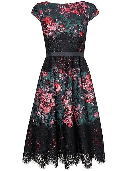 Polina Lace Dress £75 click to visit Phase Eight