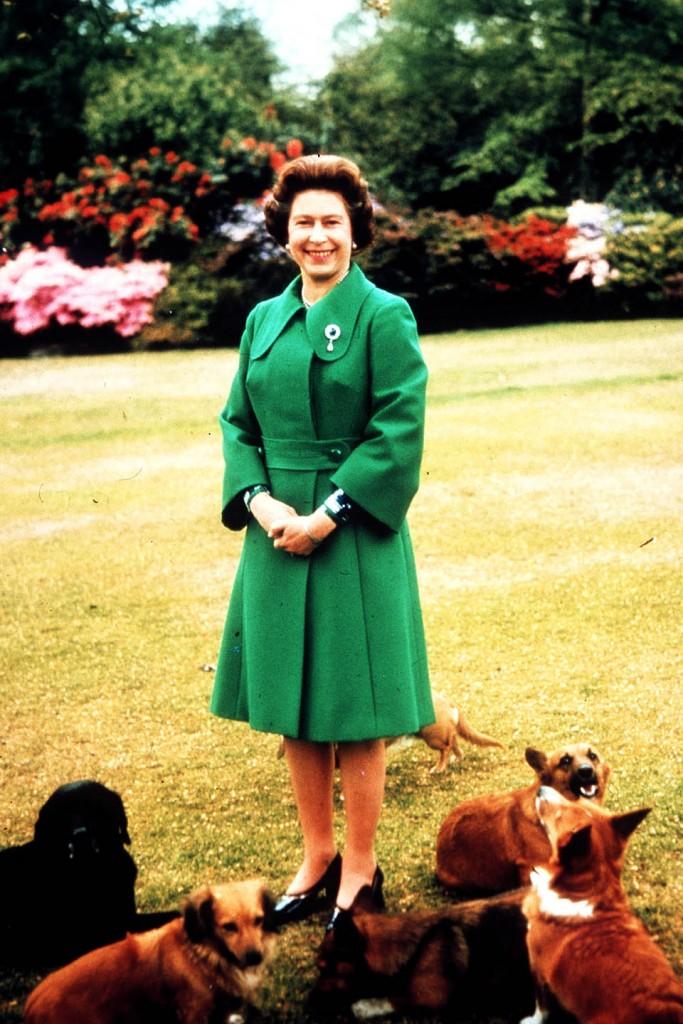 HM The Queen Elizabeth II at Sandringham with Her Corgies - 1960s