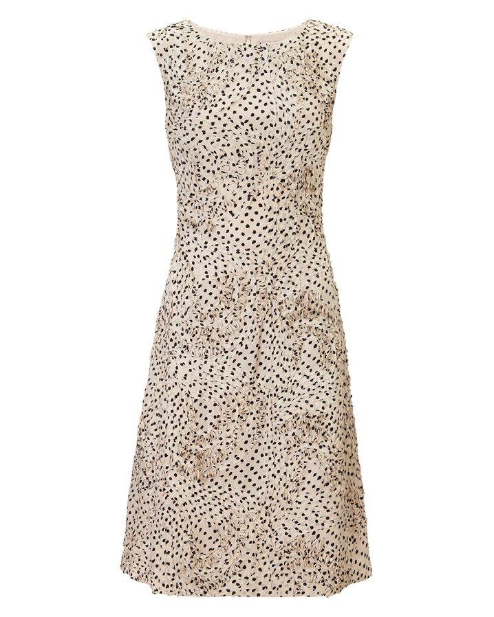 Dottaline Tapework Dress £150.00 click to visit Phase Eight