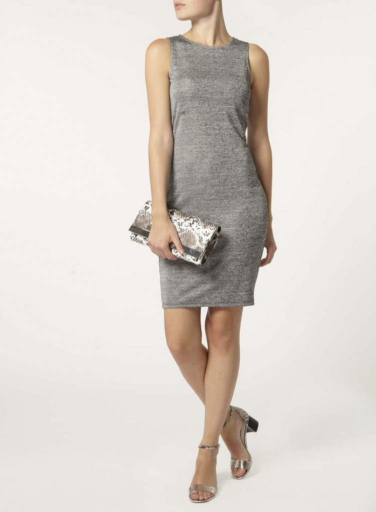 Silver Tube Dress     Price: £18.00     Click to visit Dorothy Perkins