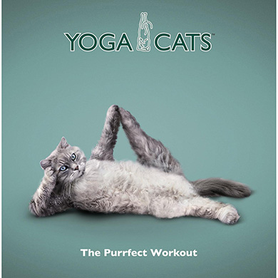 Yoga Cats £4.99 Click to visit Qwerkity