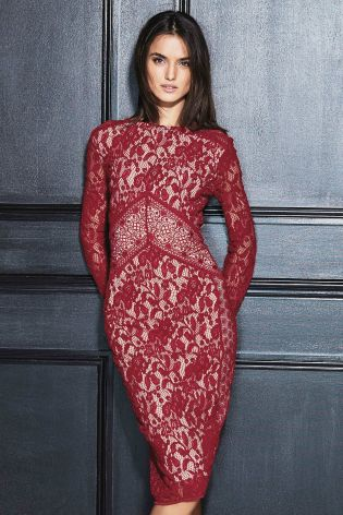 Lace Bodycon Dress £6 click to visit Next