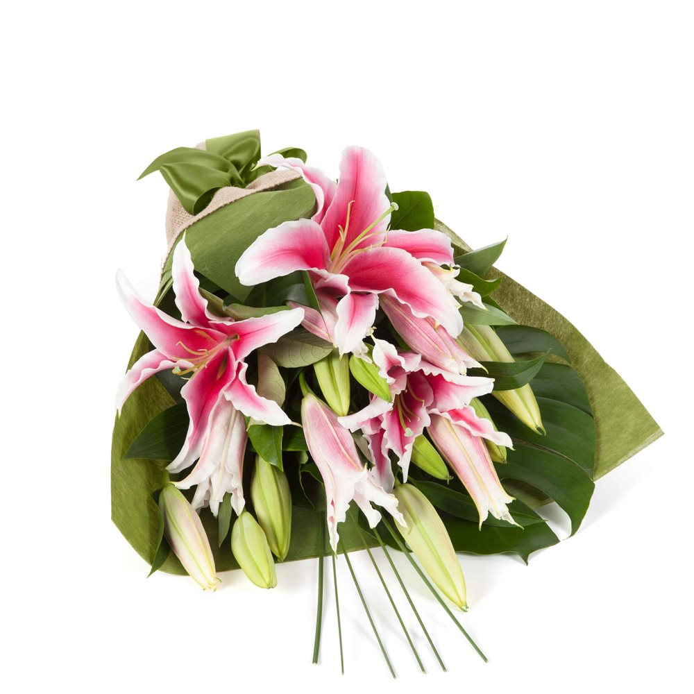 Oriental Lilies - In Vogue Pink Click to visit freshflowers.com.au