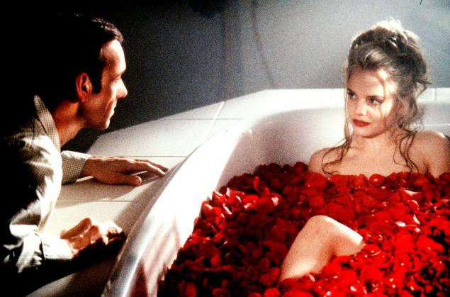 American Beauty Rose Scene