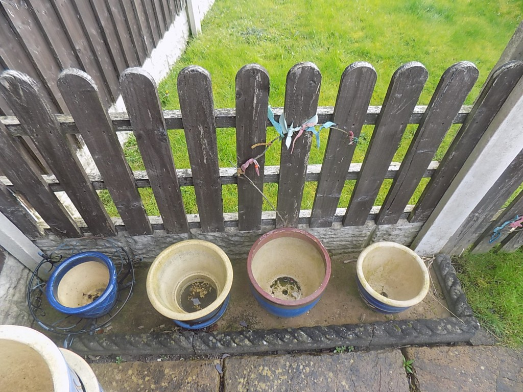Empty and damaged pots