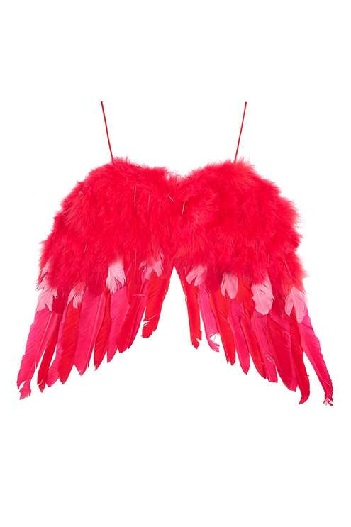 Feather Wings £50.00 Click to visit Topshop