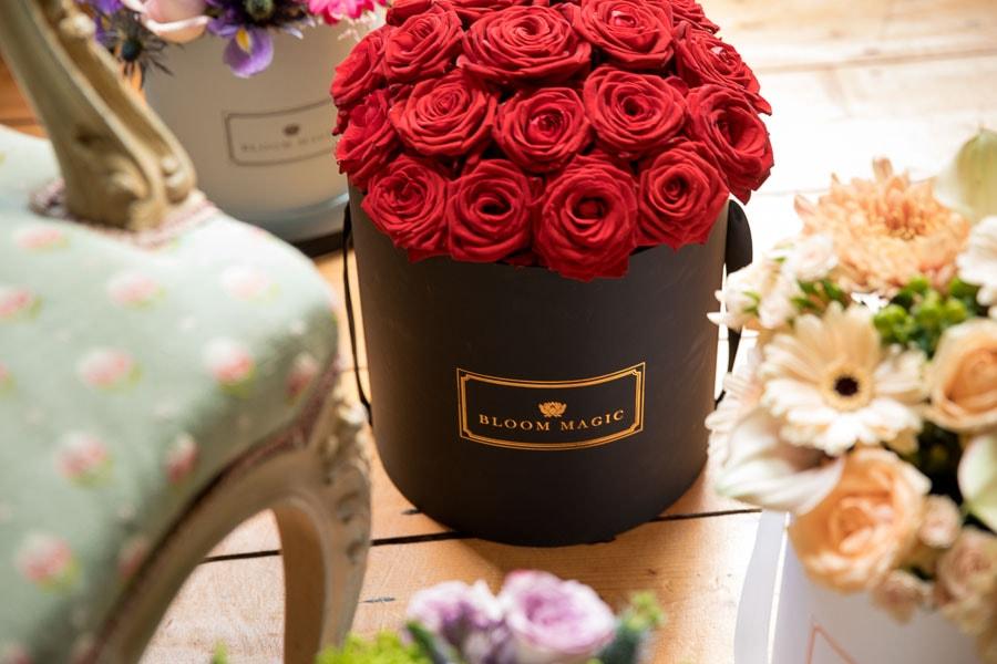 parisian_hatbox_collection_bloom_magic_12_min